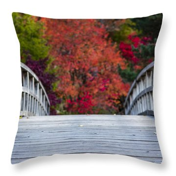Throw Pillow featuring the photograph Cypress Bridge by Sebastian Musial