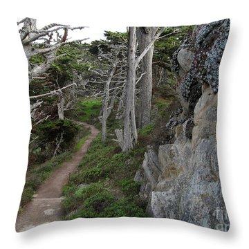 Cypress Grove Trail Throw Pillow