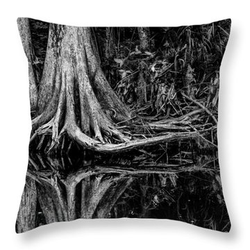 Cypress Roots - Bw Throw Pillow by Christopher Holmes