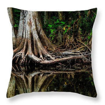 Cypress Roots Throw Pillow by Christopher Holmes
