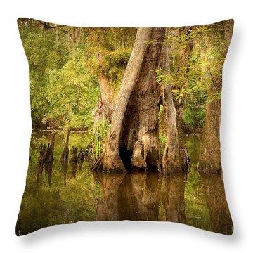 Cypress  Throw Pillow by Scott Pellegrin