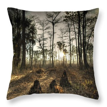 Cypress Stumps And Sunset Fire Throw Pillow
