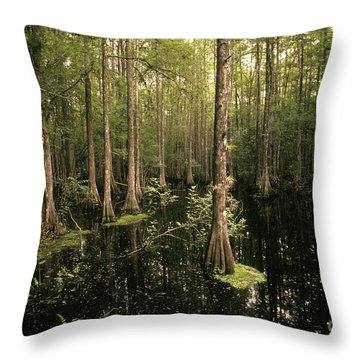 Cypress Swamp Throw Pillow by Ron Sanford