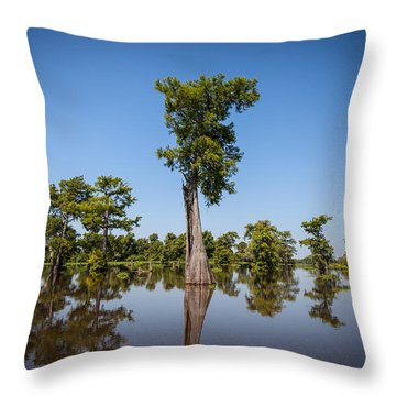 Cypress Tree Covered In Spanish Moss Throw Pillow