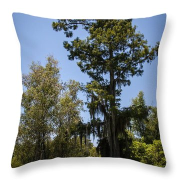 Cypress Tree With Moss Throw Pillow