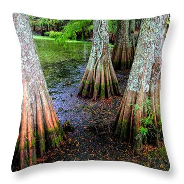 Cypress Waltz Throw Pillow by Karen Wiles