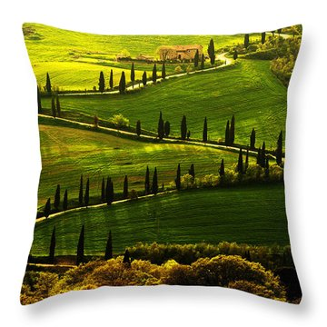 Cypresses Alley Throw Pillow by Jaroslaw Blaminsky