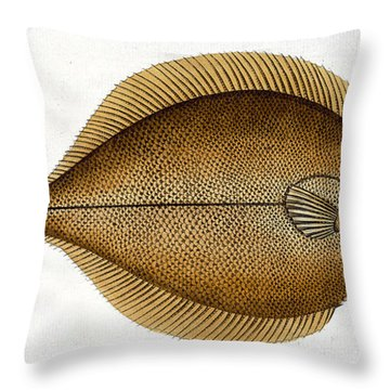 Dab Throw Pillow by Andreas Ludwig Kruger