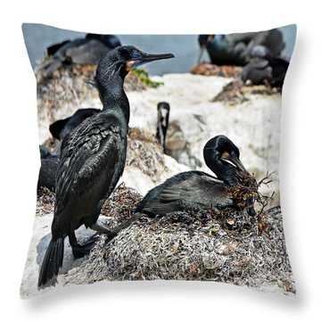 Dad And Mom Building The Best Nest Throw Pillow