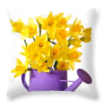 Daffodil Display Throw Pillow by Amanda Elwell