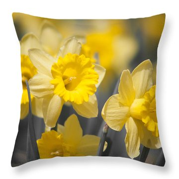 Daffodil Faces Throw Pillow