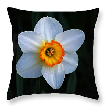 Throw Pillow featuring the photograph Daffodil In Riverside Park by Bill Swartwout