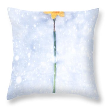 Daffodil In Snow Throw Pillow by Joana Kruse