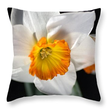 Daffodil In White Throw Pillow