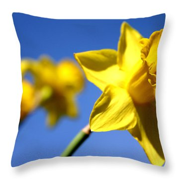 Daffodil Line Throw Pillow by Sarah OToole