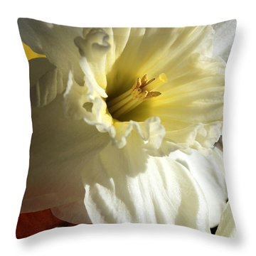 Daffodil Still Life Throw Pillow by Kenny Glotfelty