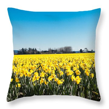 Daffodils And Blue Skies Throw Pillow
