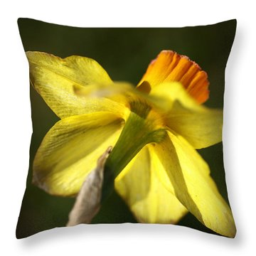 Throw Pillow featuring the photograph Daffodils Grace by Joy Watson