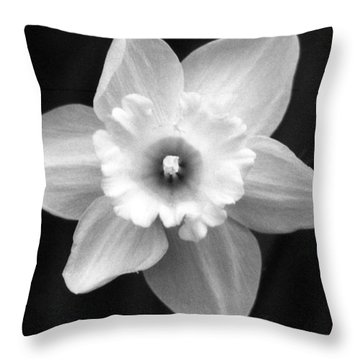 Daffodils - Infrared 01 Throw Pillow by Pamela Critchlow