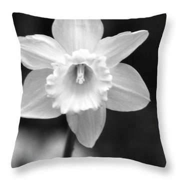 Daffodils - Infrared 10 Throw Pillow