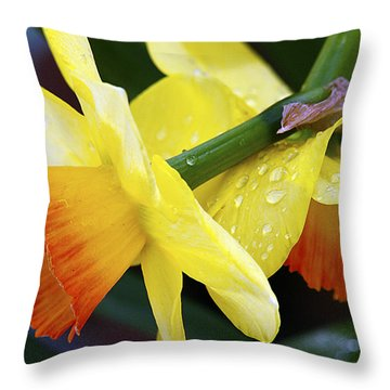 Throw Pillow featuring the photograph Daffodils With Rain by Joe Schofield