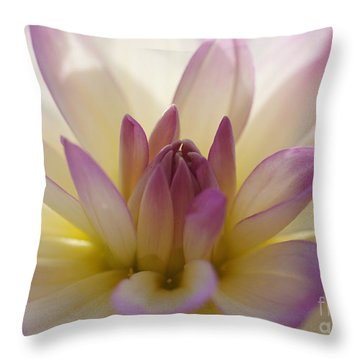 Throw Pillow featuring the photograph Dahlia 1 by Rudi Prott