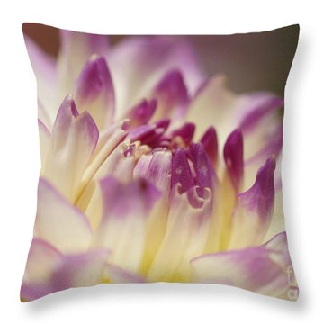 Throw Pillow featuring the photograph Dahlia 2 by Rudi Prott