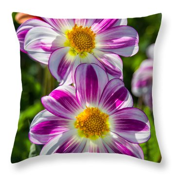 Dahlia 3 Throw Pillow