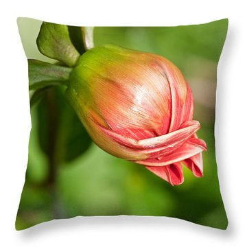 Throw Pillow featuring the photograph Dahlia Bud by Sue Smith