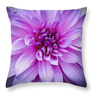 Dahlia Dahling Throw Pillow