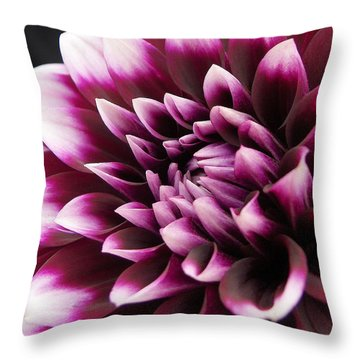 Dahlia Delightful Throw Pillow by Kathi Mirto