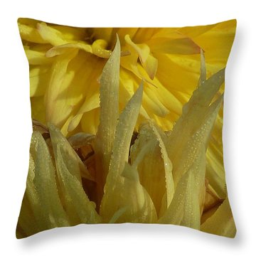 Throw Pillow featuring the photograph Dahlia Dew Yellow by Susan Garren