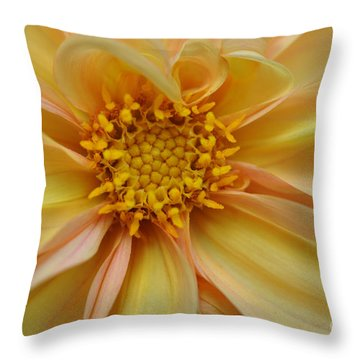 Throw Pillow featuring the photograph Dahlia  by Elaine Manley