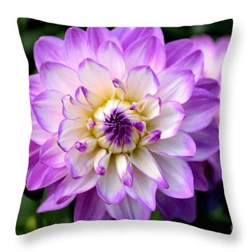 Dahlia Flower With Purple Tips Throw Pillow by Scott Lyons