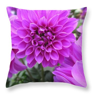 Dahlia In Pink Throw Pillow