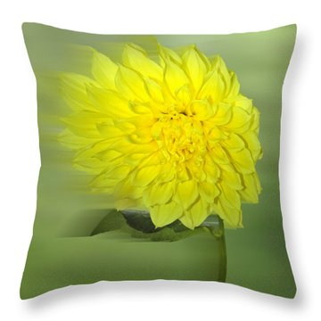 Dahlia In The Wind Throw Pillow by Nina Bradica