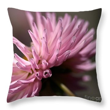 Throw Pillow featuring the photograph Dahlia by Joy Watson