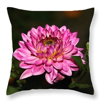 Dahlia Lucca Johanna Throw Pillow by Margaret Newcomb