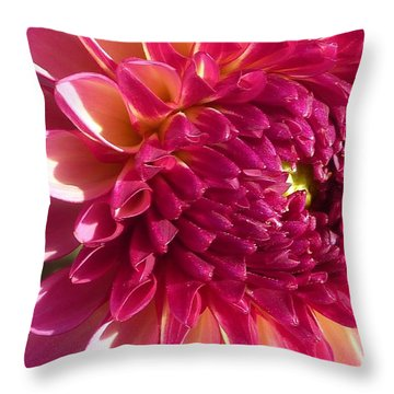Throw Pillow featuring the photograph Dahlia Pink 1 by Susan Garren