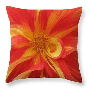 Dahlia Unfurling In Yellow And Red Throw Pillow