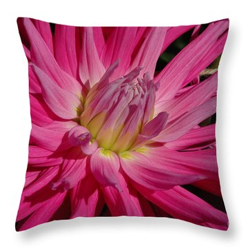 Dahlia X Throw Pillow