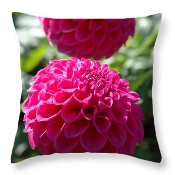 Throw Pillow featuring the photograph Dahlia Xi by Christiane Hellner-OBrien