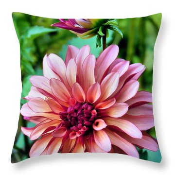 Throw Pillow featuring the photograph Dahlias In Bloom by Janice Drew