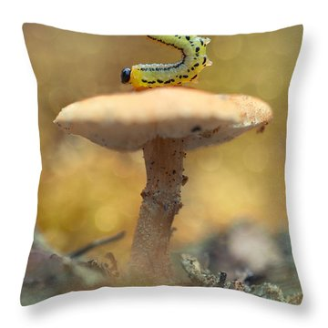 Daily Excercice Throw Pillow