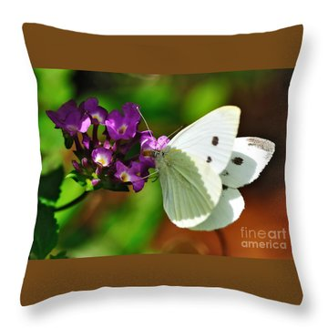 Dainty Butterfly Throw Pillow by Kaye Menner