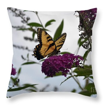 Dainty Throw Pillow by Judy Wolinsky