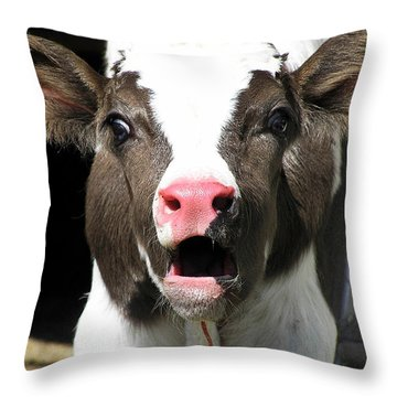 Dairy Cow Throw Pillow by Christina Rollo