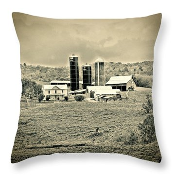 Dairy Farm Throw Pillow by Denise Romano