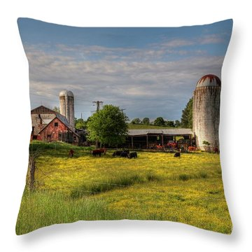 Dairy Land  Throw Pillow
