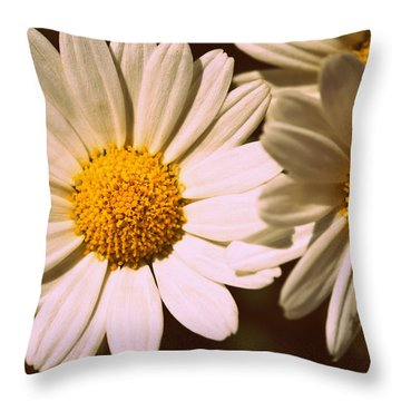 Daisies Throw Pillow by Chevy Fleet